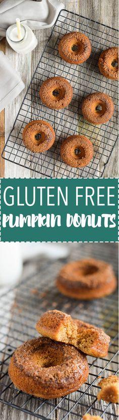 Baked Cinnamon-Sugar Pumpkin Donuts are gluten free + paleo!