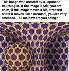 Funny Pics That Will Make You LOL! Stress tester photo i guess? Image Illusion, Illusion Art, Funny Mind Tricks, Cool Mind Tricks, Cool Optical Illusions, Optical Illusions Brain Teasers, Funny Illusions, Art Optical, Lol