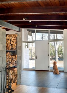 replace panels around door with glass - also see Eichler front doors    NY Times