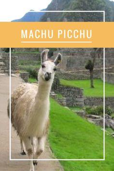 Como visitar Machu Picchu?  Veja aqui dicas para chegar até a cidade dos Incas, e explore outras dicas do Peru no Segredos de Viagem também!