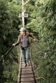 Rope bridge at Inkaterra Reserva Amazonica Lodge, Peru
