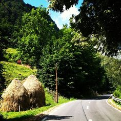 Summer in Romania. Famous Castles, Painting Inspiration, All Over The World, Places To Travel, Fun Stuff, Scenery, Destinations, Wildlife, Country Roads
