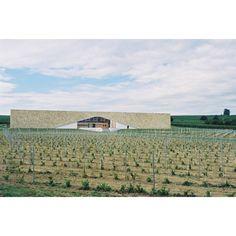 Weingut der Vereinten Winzer in Horitschon, Burgenland  Architect: www.holzbauer-partner.at  Location: Günser Straße 54, 7312 Horitschon, Österreich