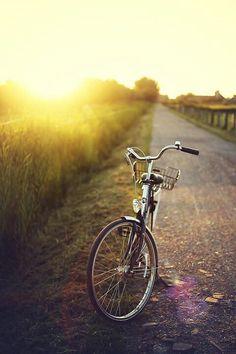 Bike sun...