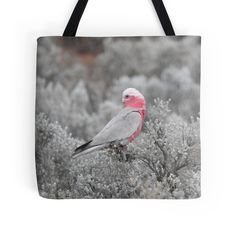 Galah by BirdBags    Small & Large