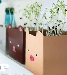 Vasos para plantas de caixa de leite passo a passo