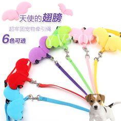 Cute Angel Pet Dog Leashes and Collars Set Puppy Leads for Small Dogs Cats Designer Adjustable Dog Harness Pet Accessori  #Affiliate
