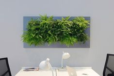LivePicture LivePicture Is A Piece Of Living Artwork That Bridges The Gap  Between Plants And Art