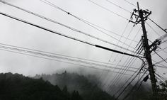 'Electrical Line, Kyoto, Japan'