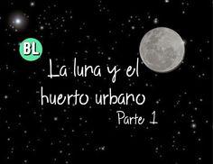 La luna en el huerto urbano (Parte 1)
