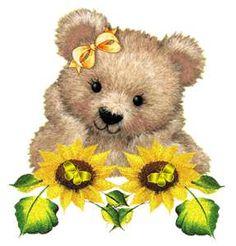 Teddy bear sunflowers Teddy Bears