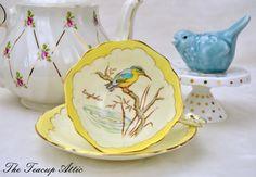 Rare Paragon Kingfisher Teacup and Saucer door TheTeacupAttic