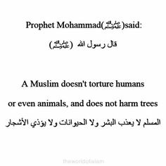 To be Muslim is to be a tree hugger <3