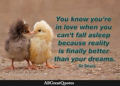 You know you're in love when you can't fall asleep because reality is finally better than your dreams. Dr. Seuss  http://www.allgreatquotes.com/you-know-youre-in-love-when-you-cant-fall-asleep/