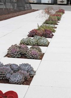 .I could see this as a table runner if you faced your table with cement pavers. Nice!