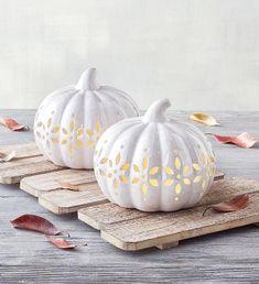 White Pumpkins, Painted Pumpkins, Fall Pumpkins, Halloween Pumpkins, White Pumpkin Decor, Fall Gift Baskets, Ceramic Lantern, Halloween Home Decor, Halloween Fashion