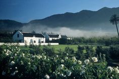 Jan Harmsgat Country House guest farm accommodation in Swellendam convenient for visiting the famous Cape Winelands of the Western Cape of South Africa. Provinces Of South Africa, South Afrika, Cape Town South Africa, Farm Stay, Beautiful Sunset, Wine Country, Exterior, World, Travel