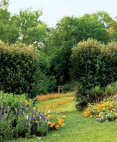 Photo Credit: Nelson Byrd Woltz; Garden Park Community Farm (Princeton Architectural Press). A narrow path leads from the formal garden of Seven Ponds Farm to the woodland gardens.