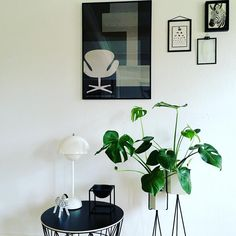 ferm LIVING Hexagon Pots and Plant Stands httpwwwfermliving