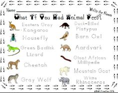 What If You Had Animal Feet Write The Room Activity