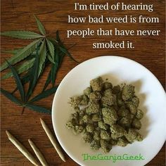 r/trees - So true. Medical Marijuana, Cannabis, Reefer Madness, Weed Quotes, So True, Green Beans, Android, Trees, Fitness