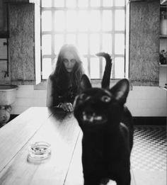 Cat and creepy friend...