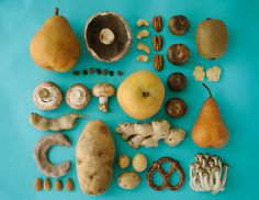 organized neatly [beautifully arranged objects, both natural and man-made, by Emily Blincoe -jl-]
