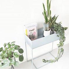 """Vi har fått påfyll """"Plant Box"""" fra @fermliving Ta turen innom www.nordiskehjem.no For å sikre deg din Plant Box før jul! Det fine bildet har vi lånt av flinke @thuisbijm #nordiskehjem #interiør #nettbutikk #fermliving #plantbox #altpålager"""