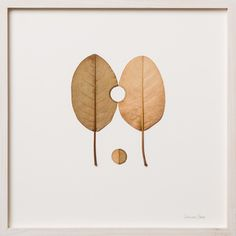 """Susanna Bauer, """"One, Two, Three"""", Crochet and Dry Leaves."""