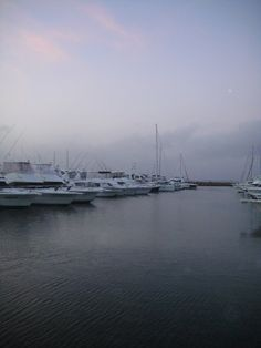 Nelson Bay Marina - Port Stephens