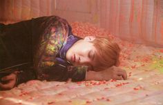 A pic from the BTS WINGS CONCEPT BOOK. it's unsettling seeing Hobi lying in a padded room surrounded by pills. J Hope Selca, Bts J Hope, Gwangju, Jung Hoseok, Bts Bangtan Boy, Jimin, Namjoon, Taehyung, Theme Bts