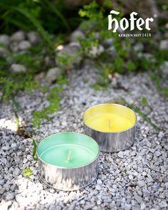 Wisst ihr, was Stechmücken 🦟 GAR NICHT mögen? Citronella, Zitronengras und Lavendel! 🍋 Deshalb sind wir, im Gegensatz zu den lästigen Plagegeistern, sehr begeistert von unseren Outdoor-Bechern. 😄🕯 Schönes Kerzenlicht und feiner Duft – besser lässt sich ein lauer Sommerabend wohl nicht feiern. 😊☀️ Citronella, Tea Lights, Candles, Outdoor, Summer Evening, Lemon Grass, Garden Parties, Lavender, Nice Asses