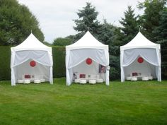 How would these look at your next backyard party? http://www.partiestogo.com/