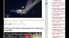 """26/01/17 9:54hs Boletín """"La Caracola"""" D.I.M. - Diario de Información del Mar Aprocean Blog http://aprocean.blogspot.com.es"""