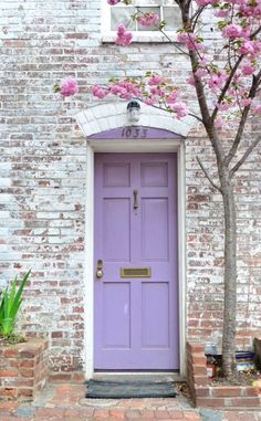 Cherry Blossoms and a Lilac Door (location unknown).. I love the look of this, though I doubt my husband would ever let me get away with that color.