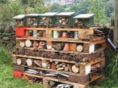 Insect Hotels - Provide a home to pollinators and pest controllers. Tidy gardens, lawns and lack of dead wood, mean less and less habitat for wild bees, spiders and ladybugs. Not that we have a tidy garden!
