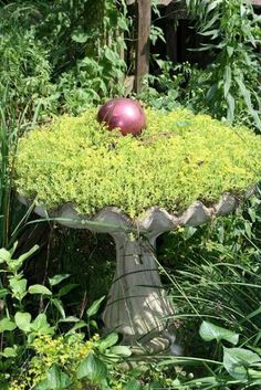 Brilliant Birdbaths Re-purposed