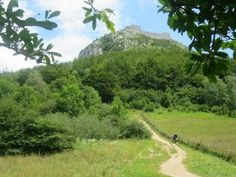 Rejs med til de mest energifyldte områder i Pyrenæerne, hvor naturen, bjergene og landsbyerne rummer en helt særlig stemning, historie og mystik.