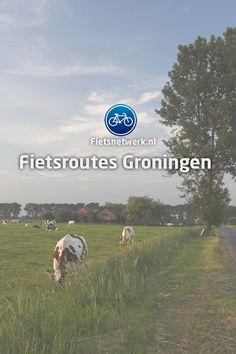 Netherlands, Hiking, Camping, Bike, Maps, The Nederlands, Walks, Campsite, Bicycle