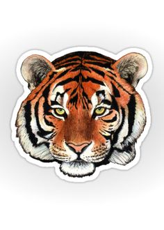 """Tiger portrait"" Sticker by Savousepate on Redbubble #sticker #stationery #drawing #siberiantiger #feline"