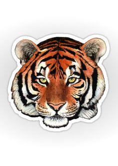 """Tiger portrait"" Sticker by Savousepate on Redbubble #sticker #stationery #drawing #siberiantiger #feline"