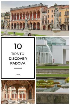 Padova a little gem in the north of Italy, largely off the beaten track. #sightseeing #padova #padua #italy
