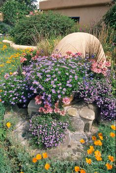 Susan Blevins of Taos, New Mexico, created an elaborate home garden featuring containers, perennial beds, a Japanese themed path and a regional style that reflectes the Spanish and pueblo architecture of the area.