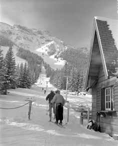 1950s skiers carve the slopes while dodging the occasional caribou.