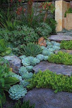 Beautiful Backyard And Frontyard Landscaping Ideas 74