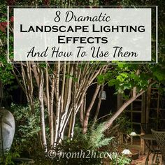 Landscape Lighting Effects: 8 Dramatic Outdoor Lighting Ideas You Must Try In Your Garden - Gardening @ From House To Home Outdoor Lighting Landscape, Best Outdoor Lighting, Landscape Lighting Design, Backyard Lighting, Dramatic Lighting, Lighting Ideas, Outdoor Garden Decor, Cool Landscapes, Backyard Landscaping