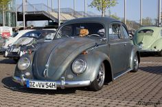 1954 Patina Oval Bug Ovali Käfer, MaiKäferTreffen Hannover 2013
