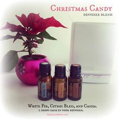 I LOVE this essential oil blend.  Smells like candy.