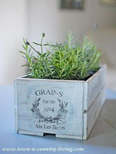 Decorating in the Family Room Lavender in Painted Crate with French Graphic - makes an easy centerpiece!Lavender in Painted Crate with French Graphic - makes an easy centerpiece! Shabby Chic Terrasse, Shabby Chic Patio, Painted Furniture, Diy Furniture, Cottage Garden Plants, House Plants, Simple Centerpieces, French Country Decorating, Flower Boxes
