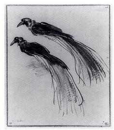two-studies-of-a-bird-of-paradise-1630.jpg!Large.jpg